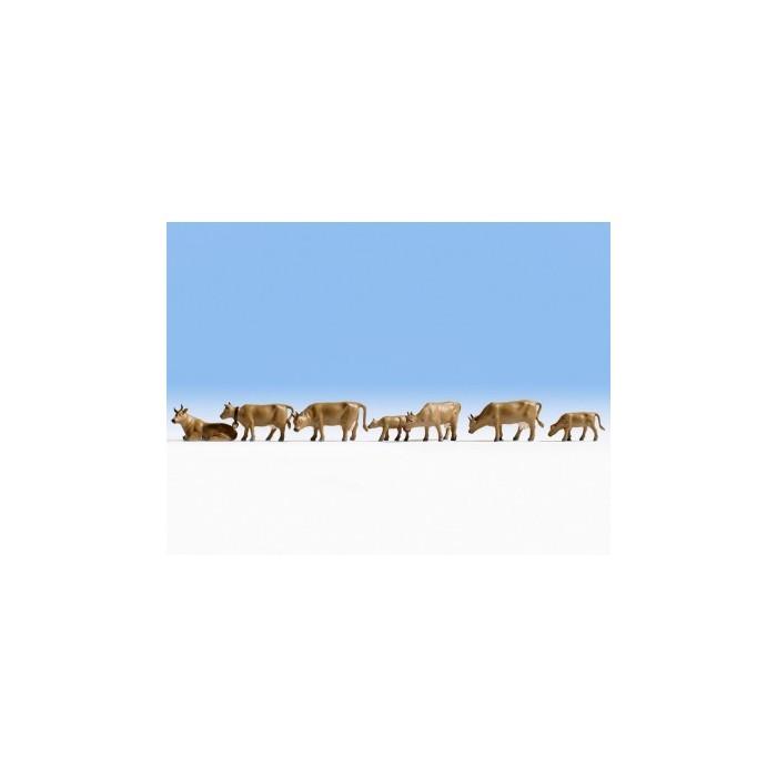 36722 Noch Koeien donkerbruin