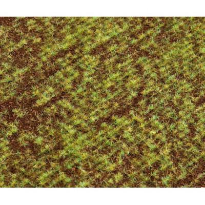 180471 Faller Landschaps-segment akker, kiemend zaad