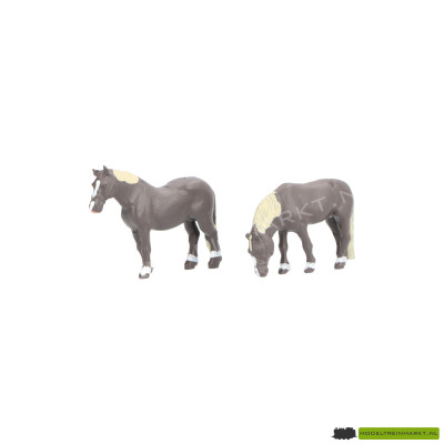 Noch Paard