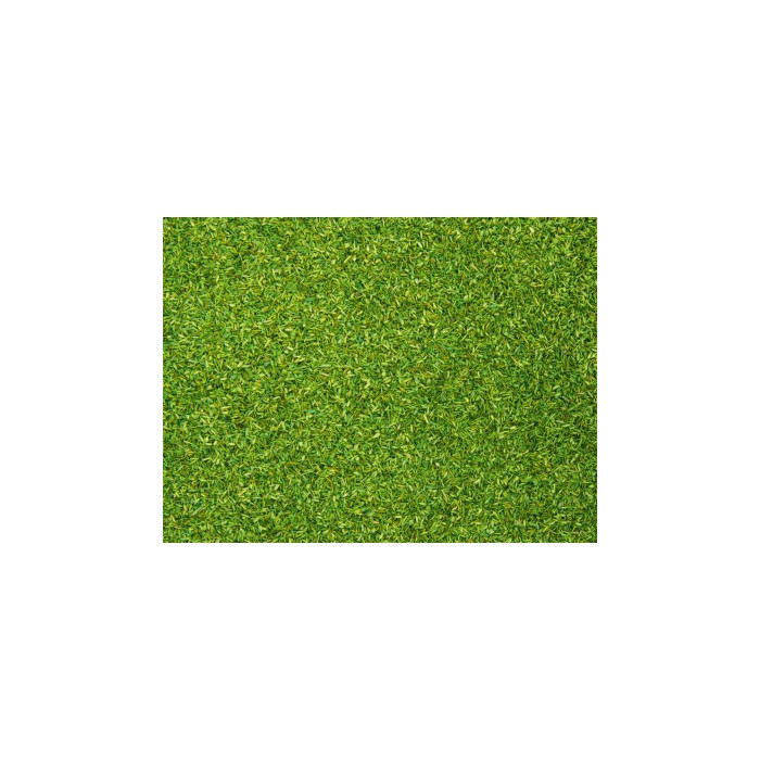 08410 Noch Strooimateriaal Alpenwei licht groen