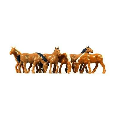 5018 Merten Paarden